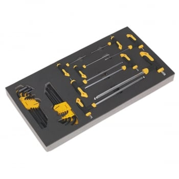 S01134 TOOL TRAY WITH T-HANDLE & STANDARD HEX KEY SE
